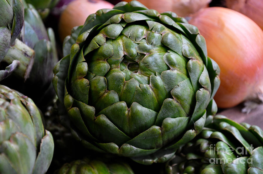 Vegetable Photograph - Artichoke by Camille Lyver