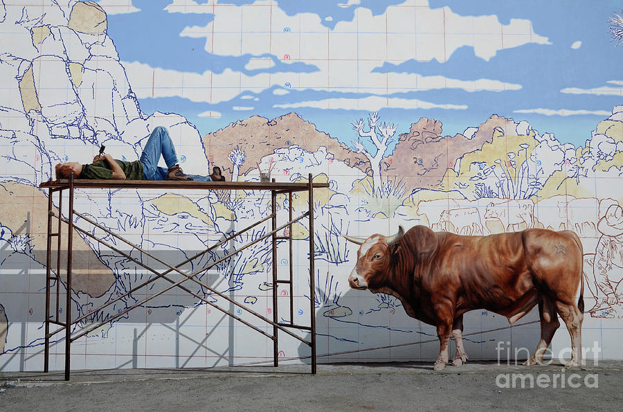 Mural Photograph - Artist At Work by Bob Christopher