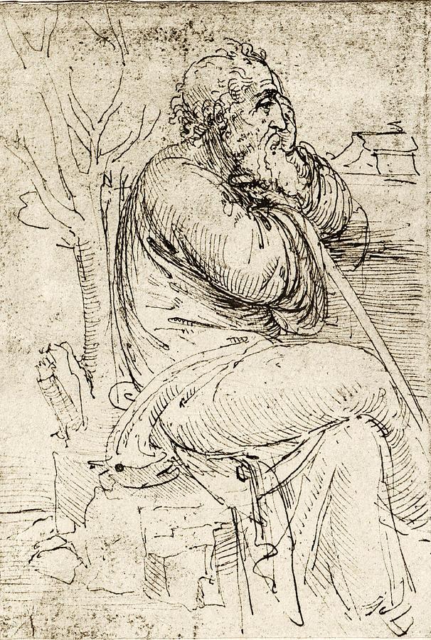 Leonardo Da Vinci Photograph - Artwork By Leonardo Da Vinci by Sheila Terry