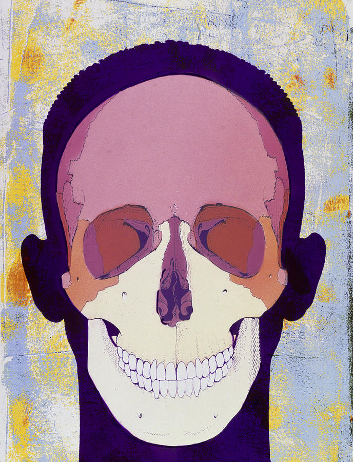 Skull Photograph - Artwork Of A Human Skull In Front View by Hans-ulrich Osterwalder