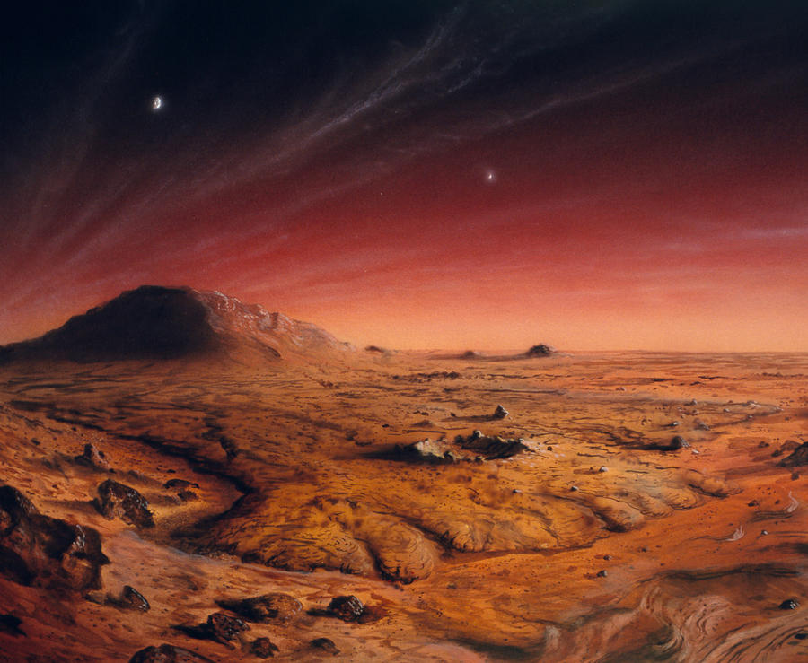 Artwork Of Mars Surface Photograph by Chris Butler