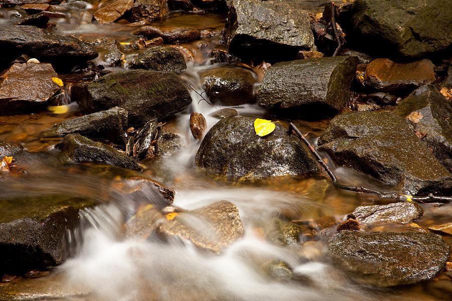 Water Photograph - As It Runs by Karol Livote