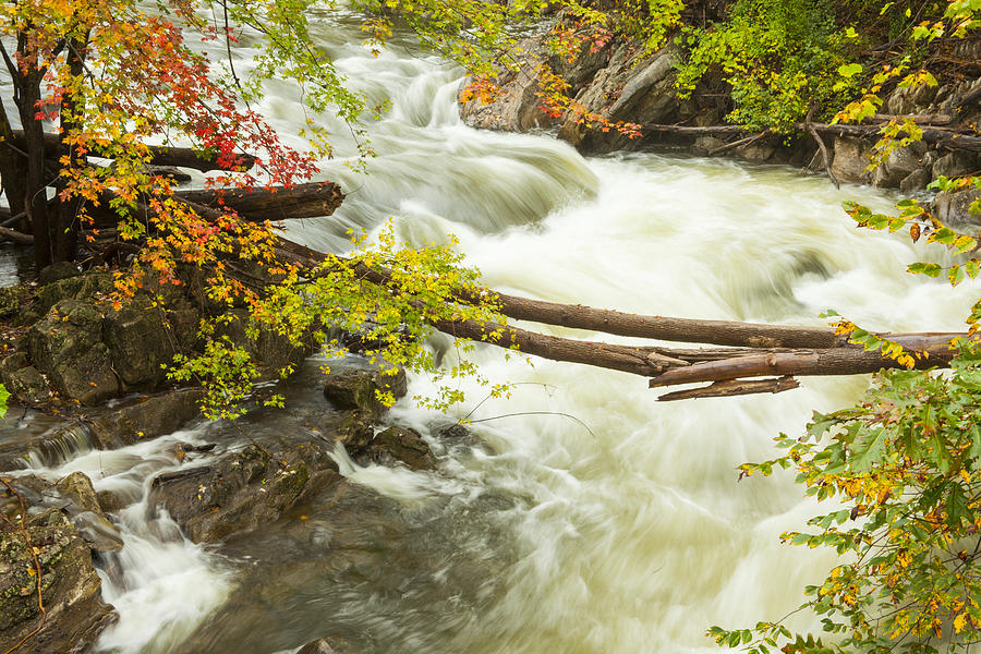 Water Photograph - As The River Flows by Karol Livote