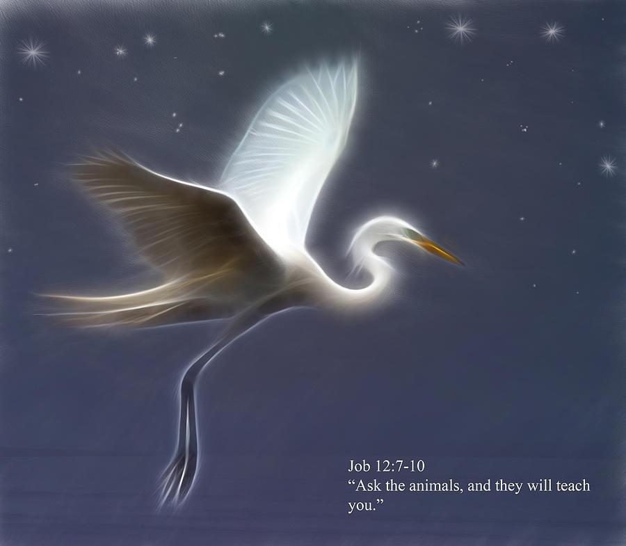 Great Egret Digital Art - Ask The Animals by Hazel Billingsley