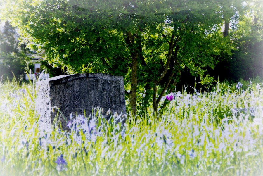 Church Photograph - At Rest by Marilyn Wilson