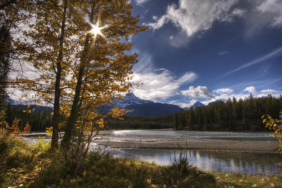 Autumn Photograph - Athabasca River With Mount Fryatt by Dan Jurak