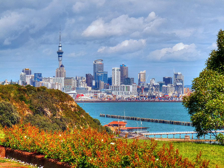 Auckland Photograph - Auckland by Lynette McNees