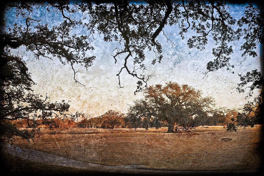 Texture Photograph - Audubon Golf Course by Ray Devlin
