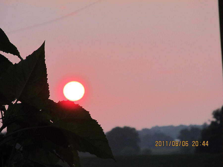 Sun Photograph - August 6 Sunset by Tina M Wenger