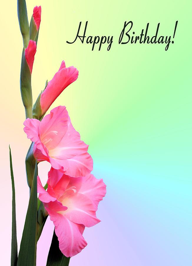 Happy Birthday Photograph - August Birthday by Kristin Elmquist