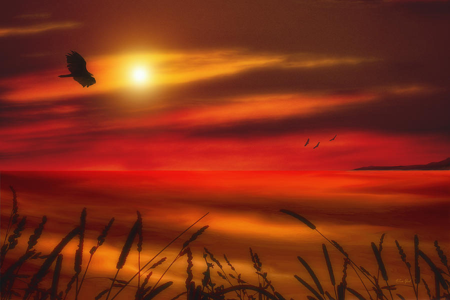 Sunset Photograph - August Sunset by Tom York Images