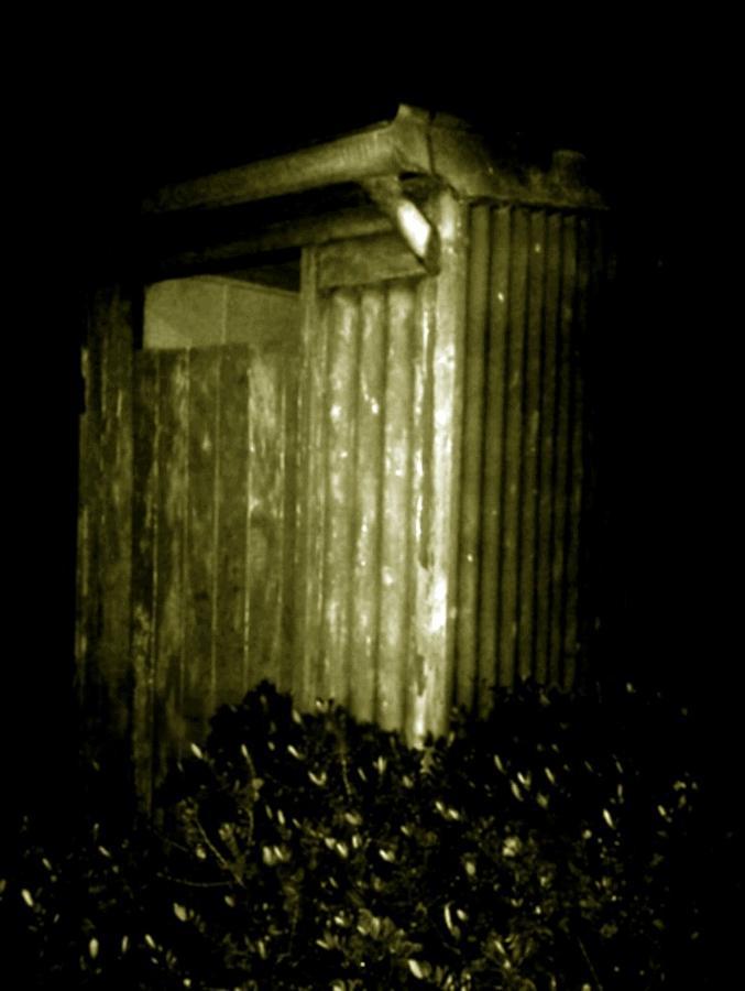 Toilet Photograph - Aussie Backyard Dunny by Julie Butterworth