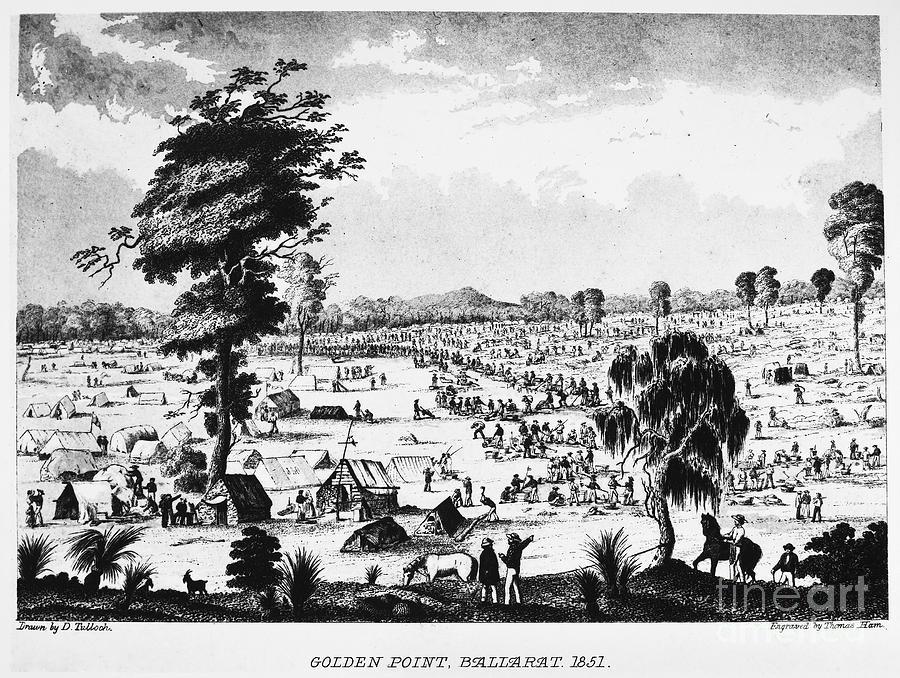 Australia Gold Rush 1851 Photograph By Granger