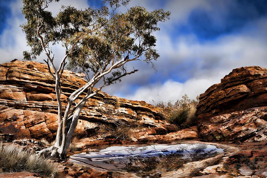 Australia Photograph - Australia Landscape 5 by Wendy White