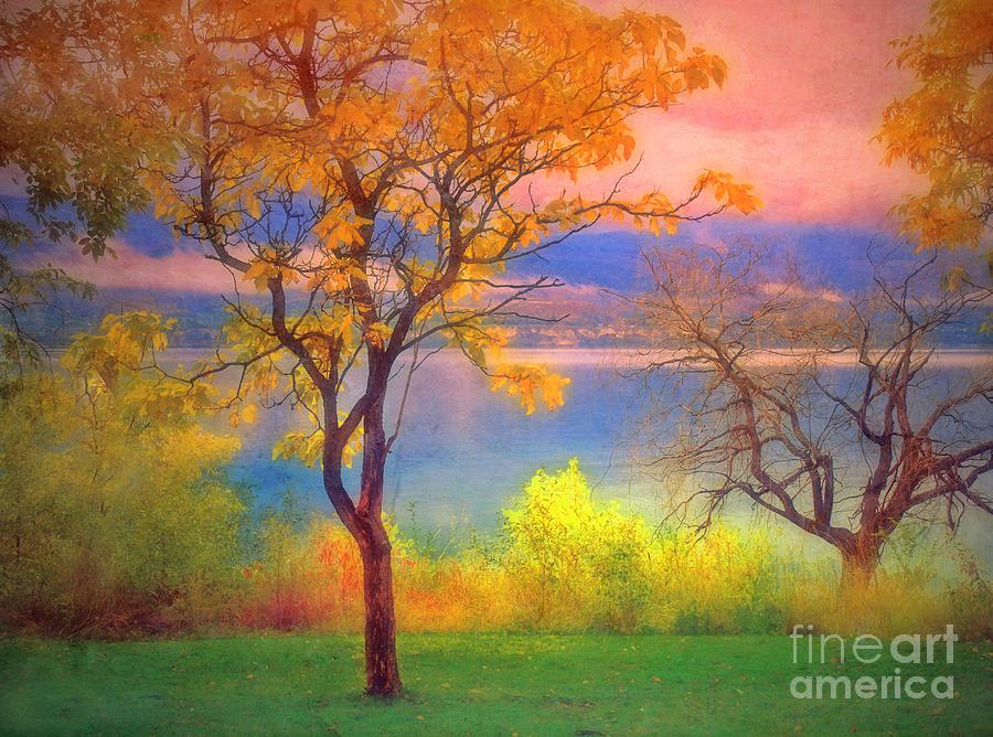 Lake Photograph - Autum Morning by Tara Turner