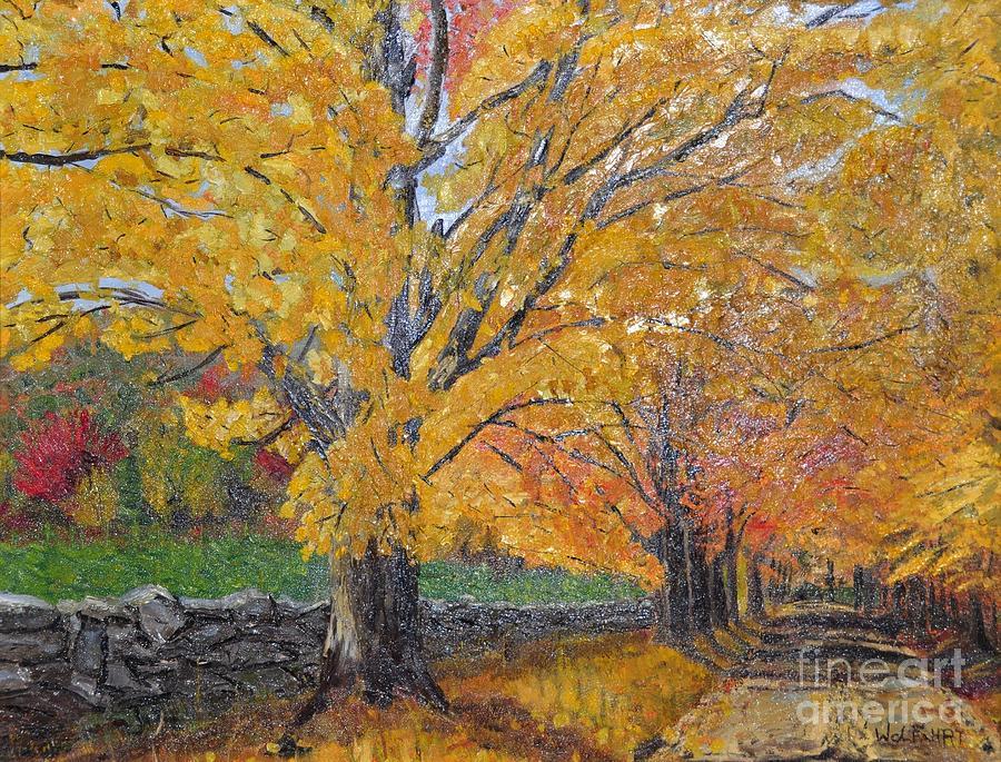 Fall Leaves Photograph - Autum Trail by John Black