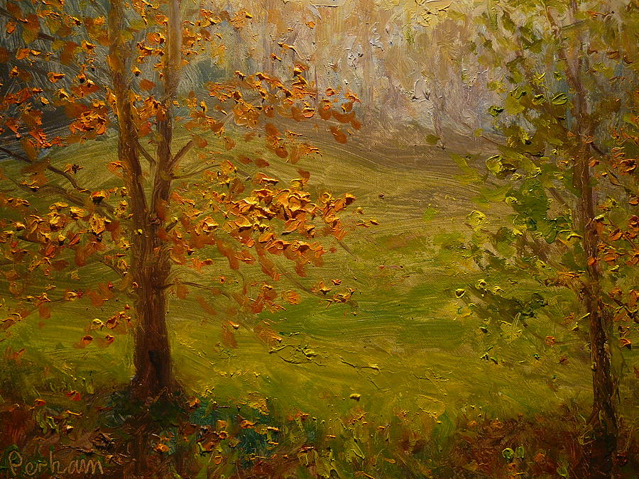 Autumn Painting - Autumn 2011 Dunedin Nz. by Terry Perham
