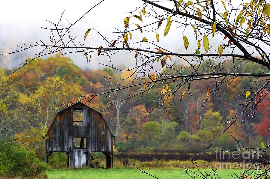 West Virginia Photograph - Autumn Along Tioga Road by Thomas R Fletcher