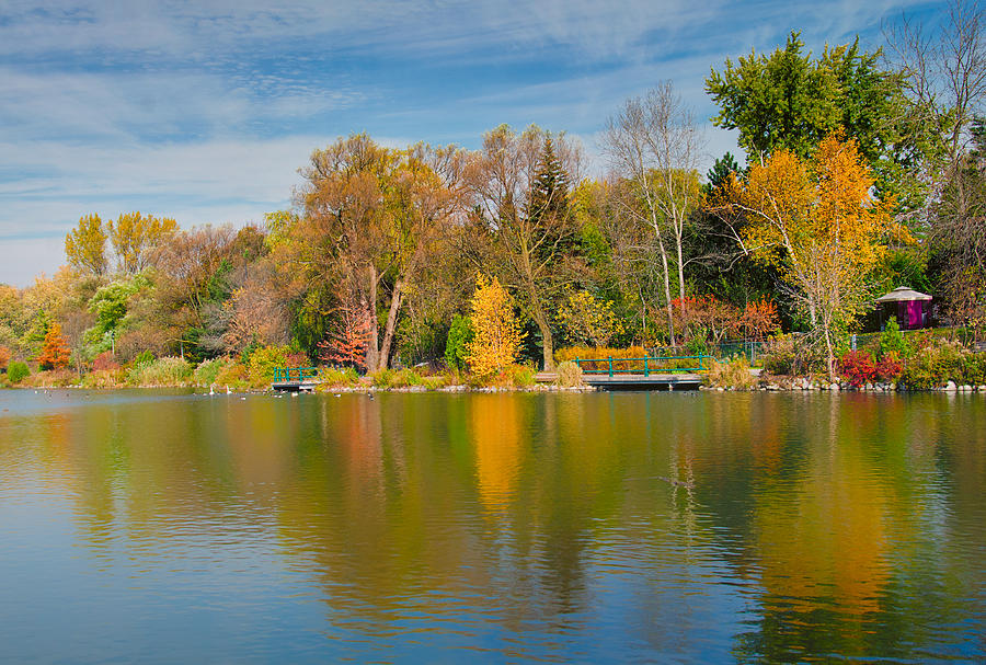 Landscape Ontario Photograph - Autumn At Mill Pond Park by Luba Citrin