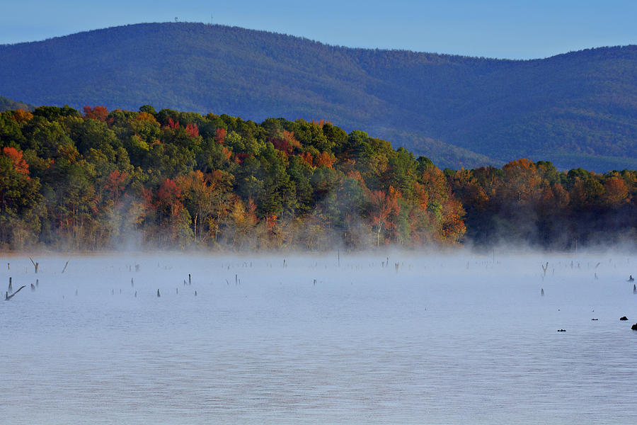 Autumn Photograph - Autumn Backdrop by Douglas Barnard
