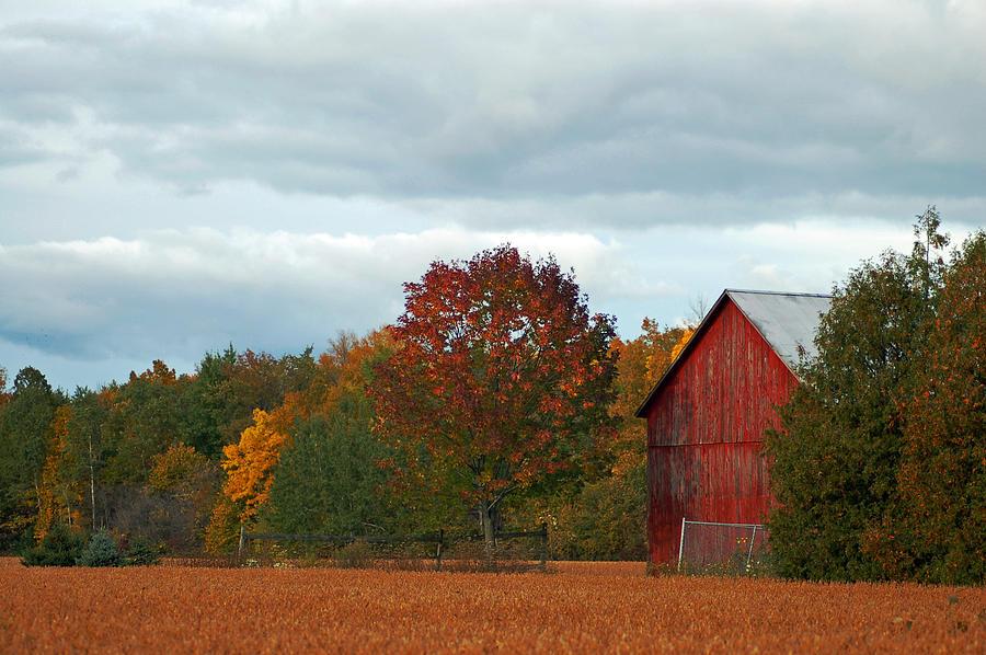 Barn Photograph - Autumn Barn by Cheryl Cencich