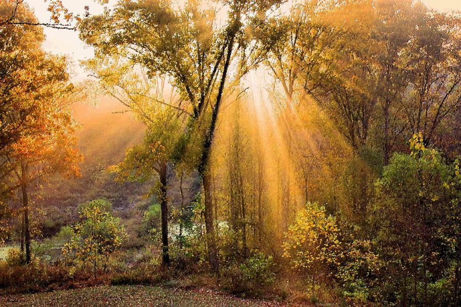 Autumn Begins Photograph By Kristin Elmquist