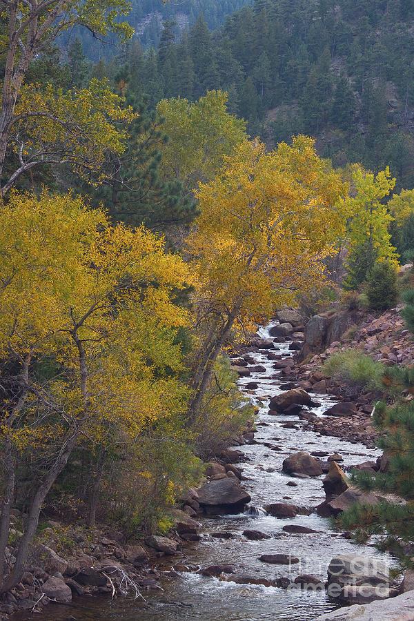 Autumn Canyon Colorado Scenic View Photograph