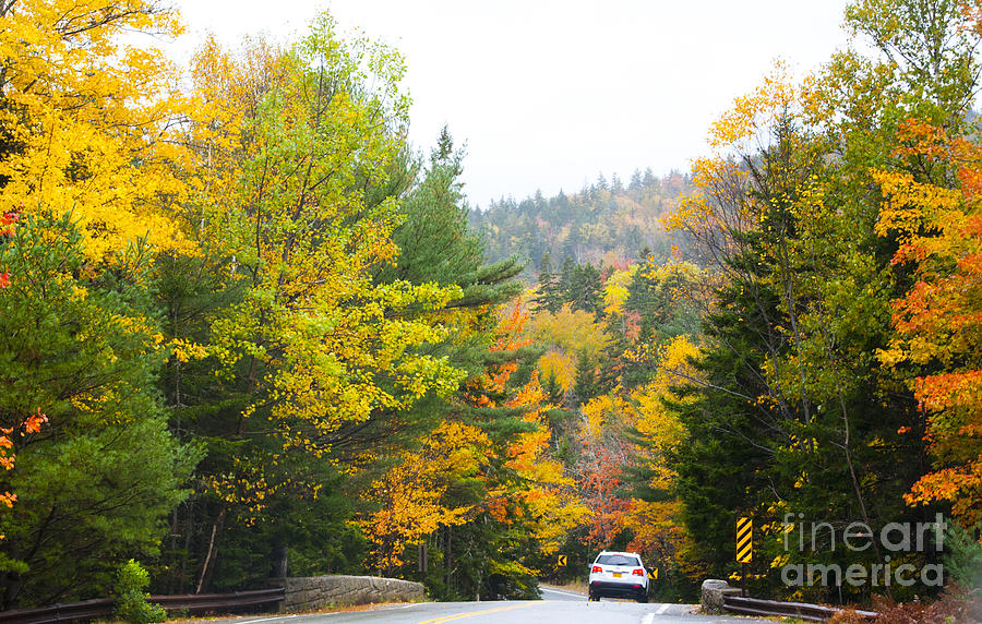 Maine Photograph - Autumn Colors 3990 by Charles  Ridgway