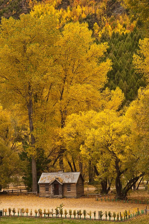 Autumn Photograph - Autumn Cottage by Graeme Knox
