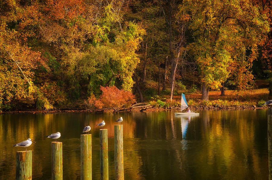River Photograph - Autumn Day by Boyd Alexander