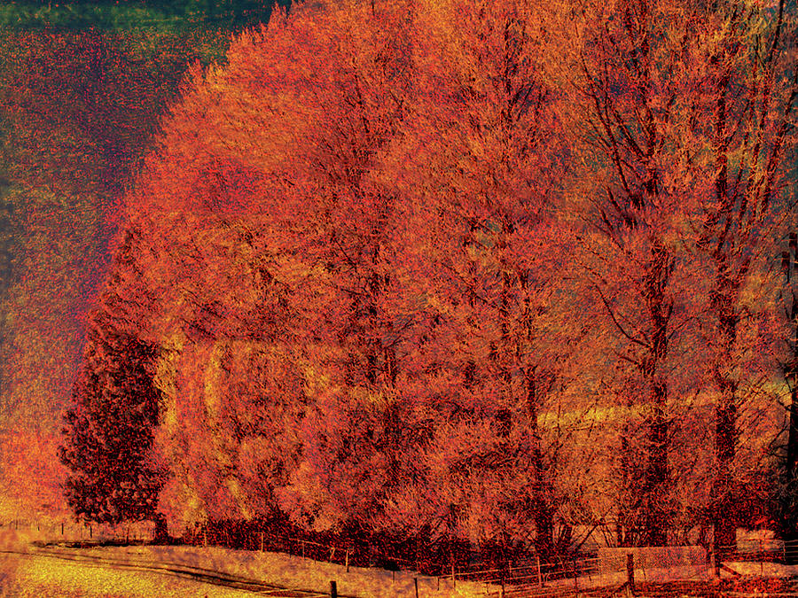 Autumn Days by Linde Townsend