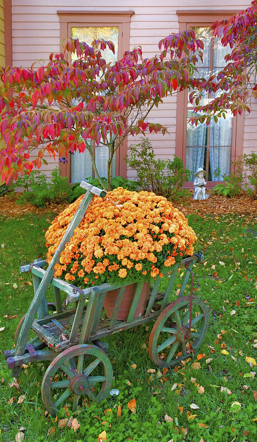 Fall Photograph - Autumn Display I by Steven Ainsworth