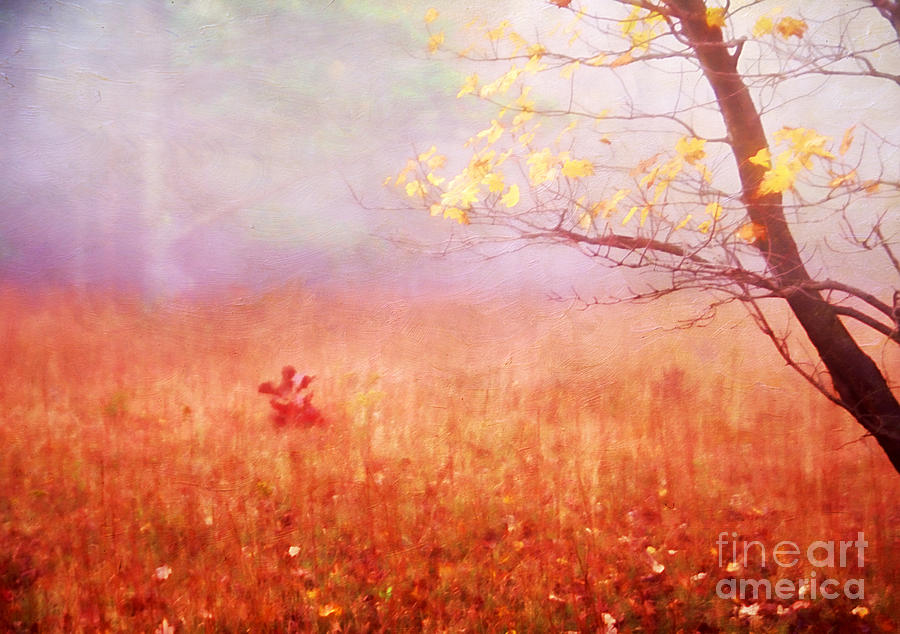 Aged Photograph - Autumn Dreams by Darren Fisher