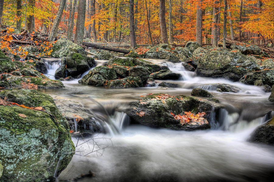 Cunningham Falls Photograph - Autumn Dreams by JC Findley
