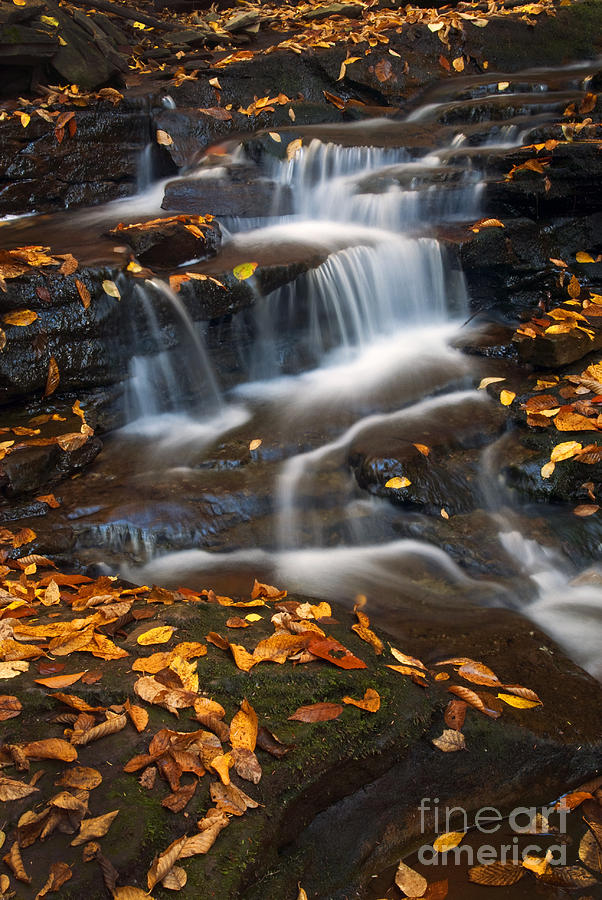 Ricketts Glen Photograph - Autumn Falls - 71 by Paul W Faust -  Impressions of Light