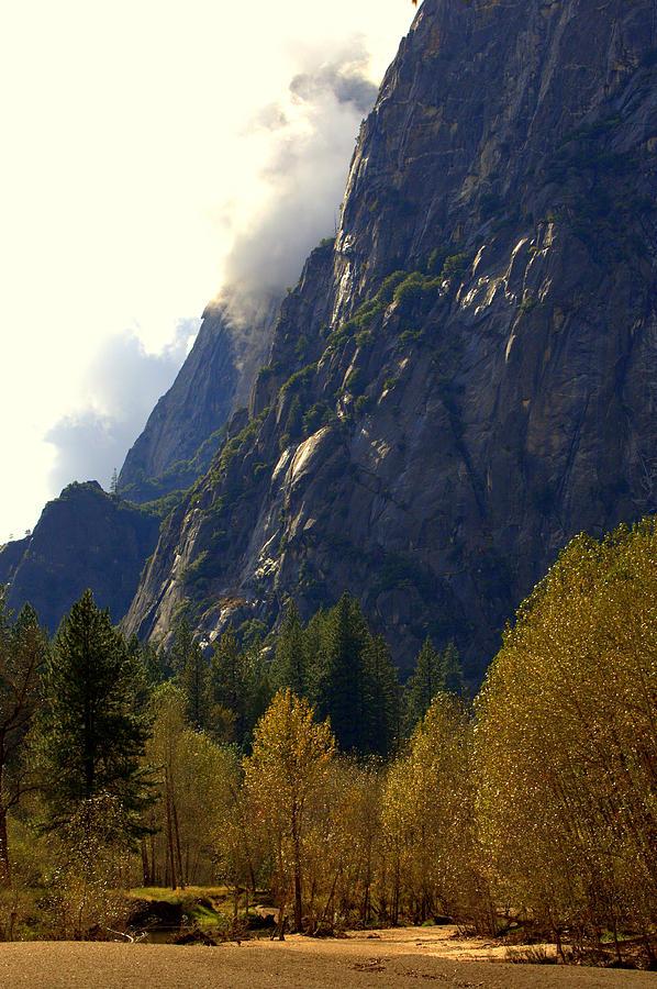 Yosemite Photograph - Autumn Glow by Lynn Bawden