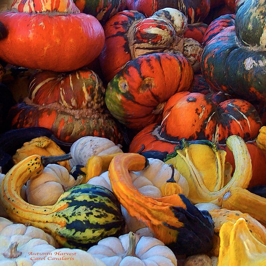 Autumn Harvest Mixed Media by Carol Cavalaris