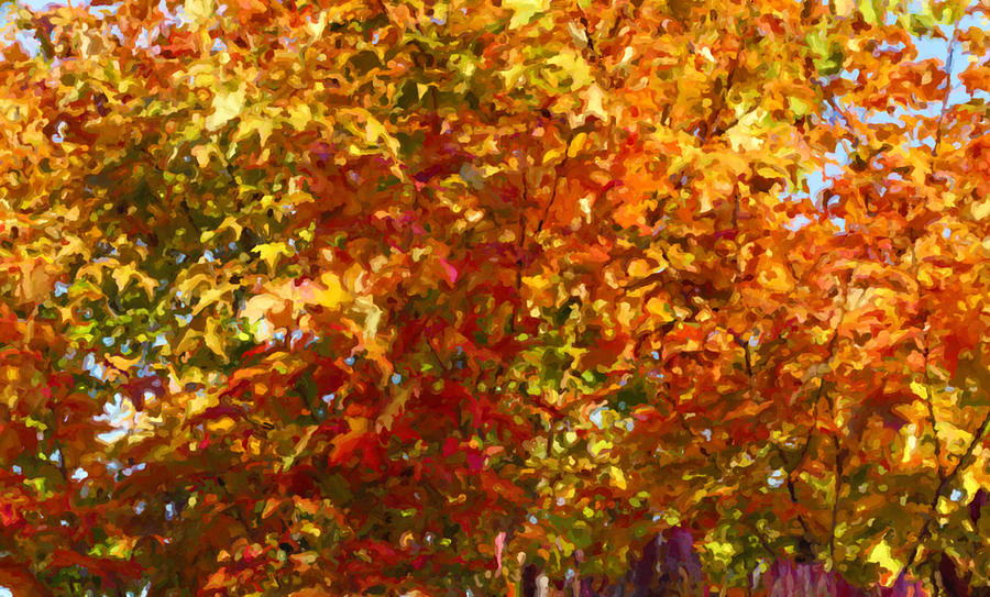 Tree Painting - Autumn In October by Anthony Rego