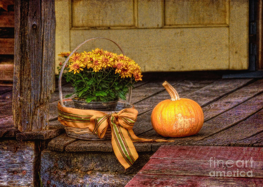 Autumn Photograph - Autumn by Lois Bryan