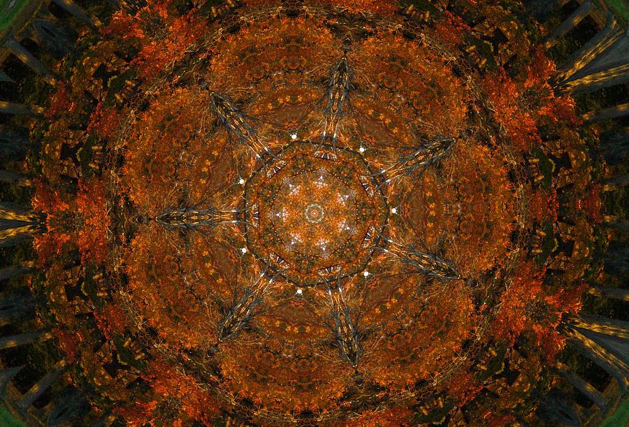 Kaleidoscope Digital Art - Autumn Kaleidoscope 9 by Rhonda Barrett