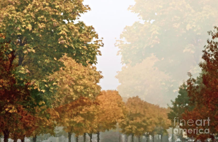 Autumn Photograph - Autumn Mist by Gwyn Newcombe