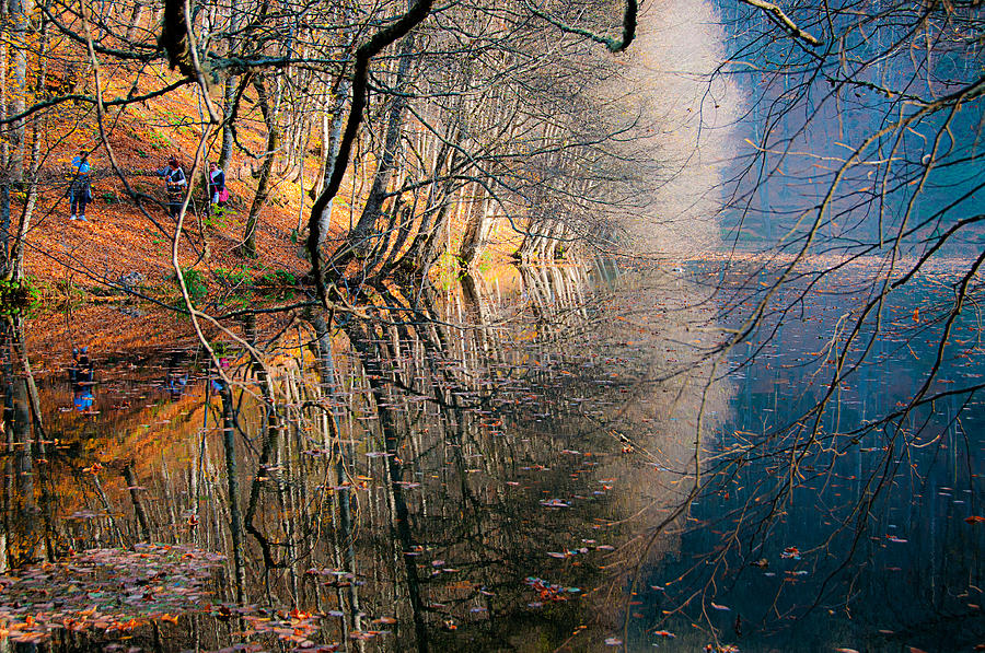 Autumn Photograph - Autumn by Okan YILMAZ