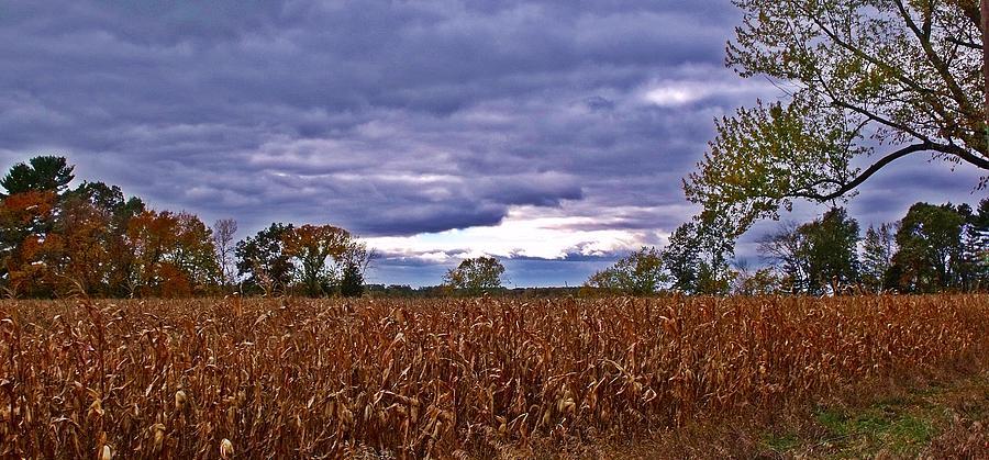 Autumn Photograph - Autumn Overcast 12 by Dave Dresser