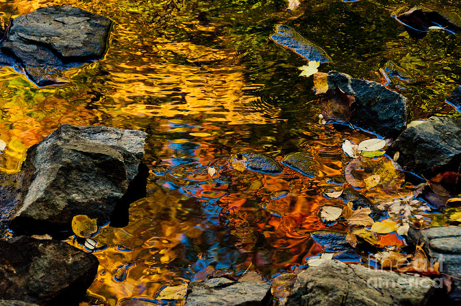 Water Photograph - Autumn Reflections by Cheryl Baxter