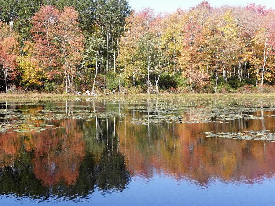 Autumn Photograph - Autumn Reflections by Kim Galluzzo Wozniak