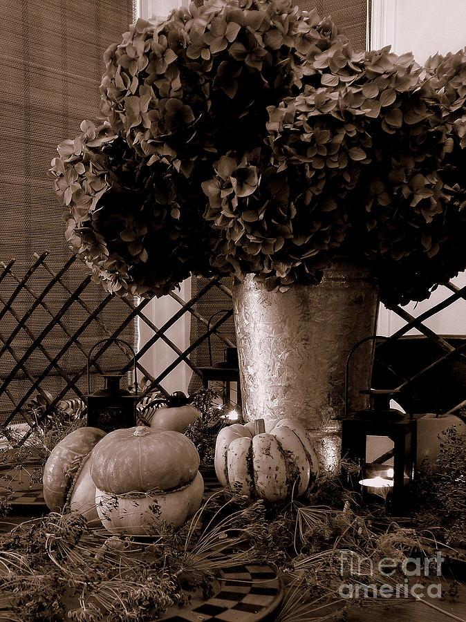 Autumn Photograph - Autumn Still Life  3 by Tanya  Searcy