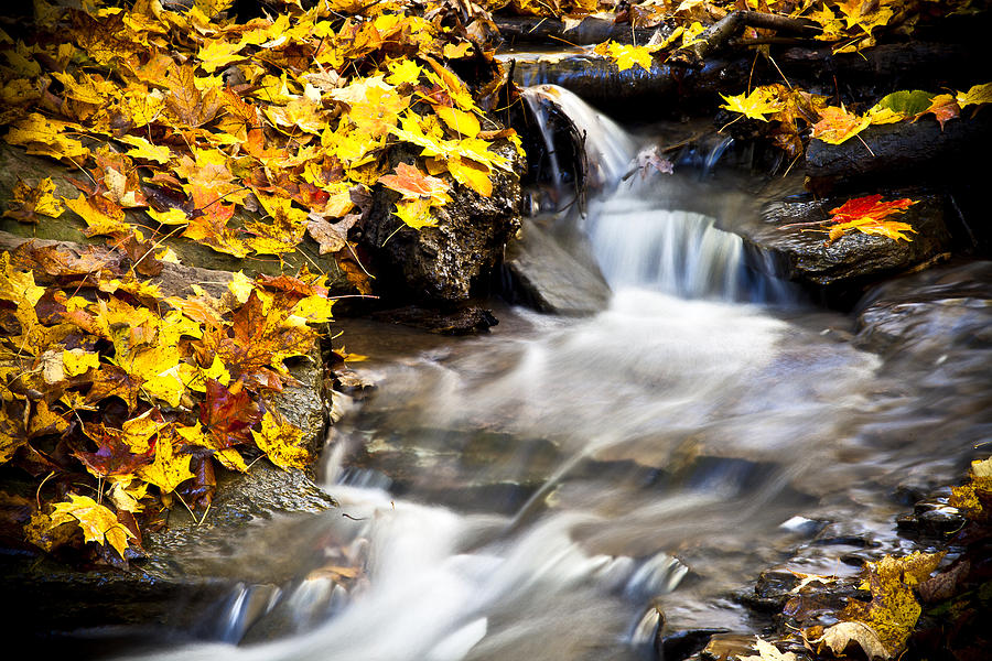 Waterfall Photograph - Autumn Stream No 3 by Kamil Swiatek