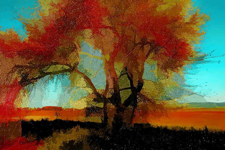 Mixed Media Photograph - Autumn Tree by Bonnie Bruno