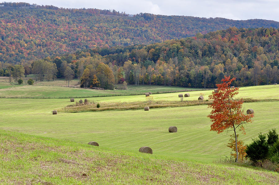 Landscapes Photograph - Autumn Valley Hay Bales by Jan Amiss Photography