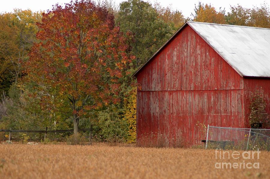 Barn Photograph - Autumnal Barn by Ginger Harris